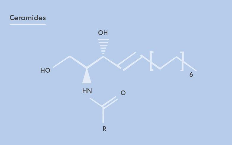Ceramides: An Essential Ingredient for Beautiful, Healthy-Looking Skin